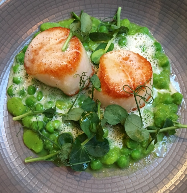 Scallops of joy